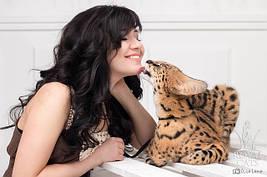 Breeder Ksena and domestic serval Loki