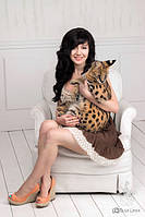 Breeder Ksena and domestic serval Loki