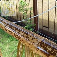 """Бамбуковый ствол """"Леопардовый"""" д.4-5см. Длина 3м."""