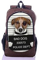 Рюкзак New Design BadDog, фото 1