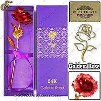"""Золотая роза - """"Golden Rose"""" + подарочная упаковка, фото 1"""