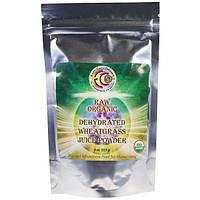 Earth Circle Organics, Organic, сок ростков пшеницы, 100 % чистый сок в порошке, 4 унции (113 г)