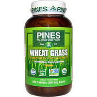 Pines International, Pines, ростки пшеницы, 500 мг, 500 таблеток