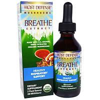Fungi Perfecti, Дыхательный сбор для защиты организма из серии Грибы для защиты организма, органический грибной препарат для поддержания здоровья