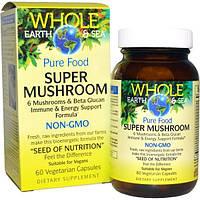 Natural Factors, Пищевая добавка Непочатое море и земля, супергриб, 60 вегетарианских капсул