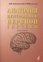 Гайворонский И.В., Ничипорук Г.И. Анатомия центральной нервной системы