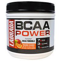 """Labrada Nutrition, """"Сила BCAA"""", аминокислоты с разветвленными боковыми цепями (BCAA), со вкусом апельсина и манго, 14,64 унций (415 г)"""