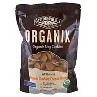 Castor and Pollux, Organix, органическое печенье для собак, с ароматом сыра чеддер, 12 унций (340 г)