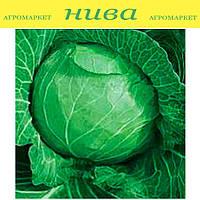 Харьковская зимняя семена капусты белокачанной поздней Hortus 100 г