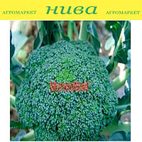 Ледницкая семена капусты брокколи Moravoseed 1 000 г
