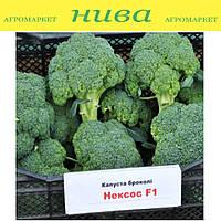 Нексос F1 семена капусты брокколи Sakata 1 000 семян