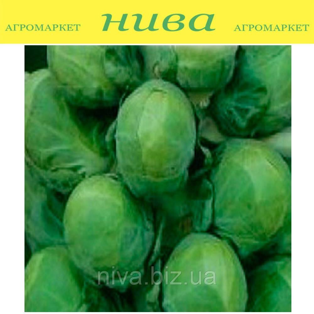 Касио семена капусты брюссельской средне-поздней Moravoseed 1 000 г