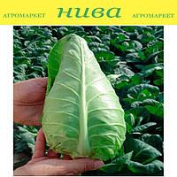 Орион F1 семена капусты белокачанной ранней конической Agri Saaten 2 500 семян