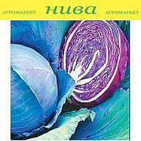 Ребол F1 семена капусты краснокачанной Syngenta 2 500 семян