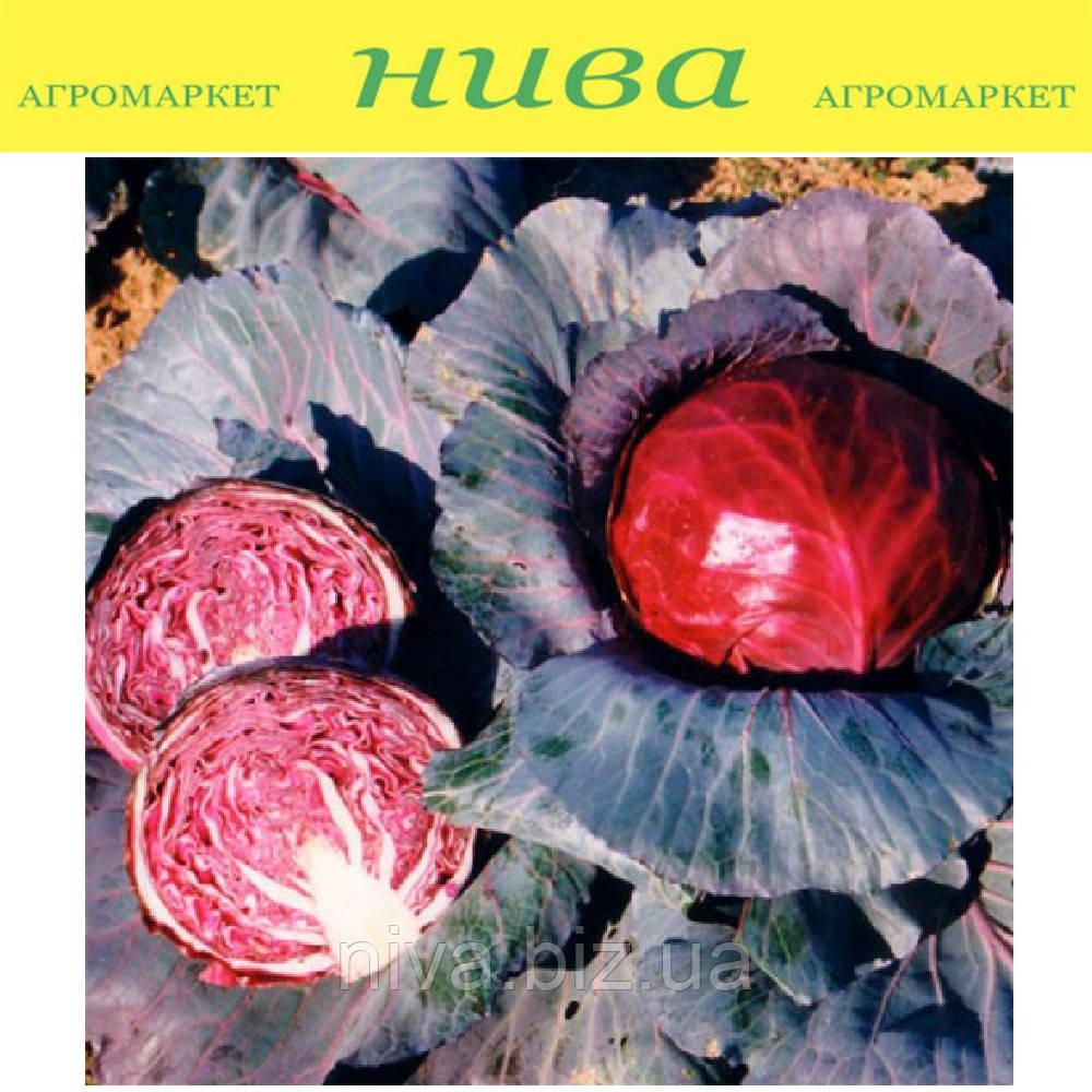 Редбол семена капусты краснокачанной среднепоздней Semenaoptom 1 000 г