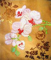 """Схема для вышивки бисером """"Розовые орхидеи""""."""