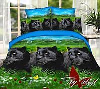 Двуспальный комплект постельного белья, BP039