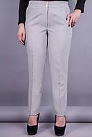 Элия. Классические брюки женские супер сайз. Серый., фото 1