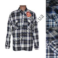 Мужская котоновая рубашка DR87 с длинным рукавом оптом недорого со склада в Одессе