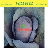 Поурово красная семена капусты краснокачанной Moravoseed 1 000 г