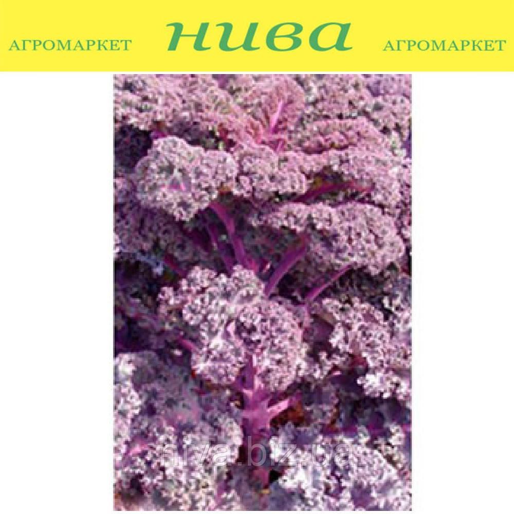 Скарлет F1 семена капусты листовой Moravoseed 1 000 г