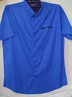 Рубашка мужская короткий рукав Турция опт