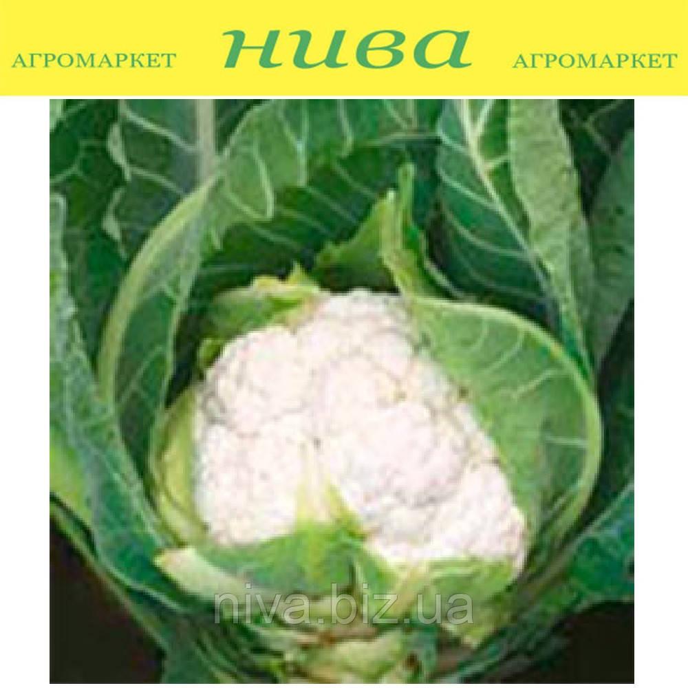 Аэроспейс F1 семена капусты цветной Syngenta 2 500 семян