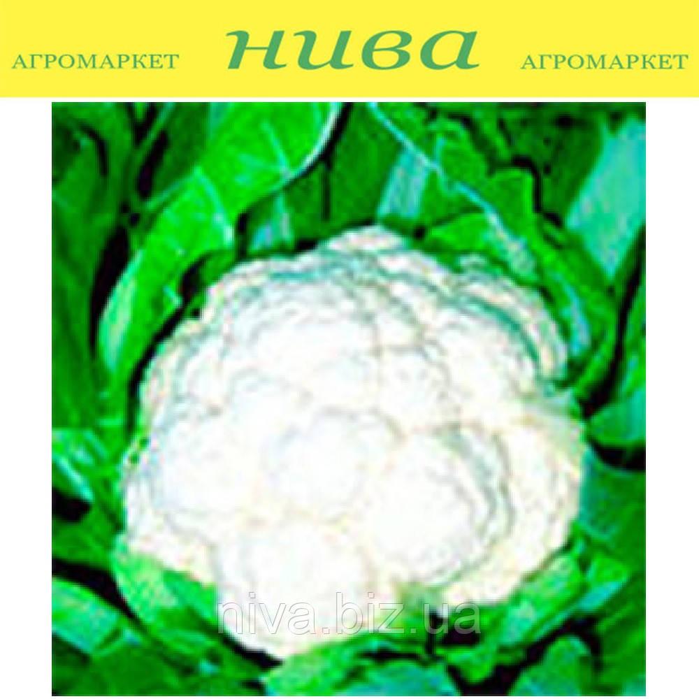 Кердос F1 (Kerdous F1) семена капусты цветной поздней Seminis 2 500 семян