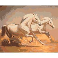 Картины по номерам / коробка. Животные, птицы. Дикий запад (бешущие кони)