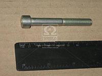 Болт М8-6gx65 крышки цепи дв.406 (длинный) (пр-во г.Кр.Этна) 874404 П-29