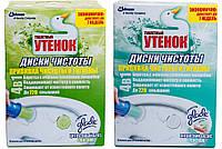 Диски чистоты для туалета (6 шт/уп)