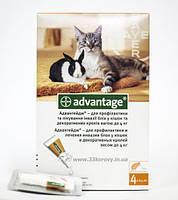 Адвантейдж для кошек и кроликов до 4 кг (1 пипетка по 0.4 мл)