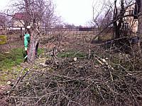 Уборка участка Киев,расчистка участков