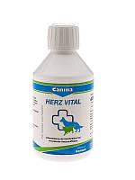 Кормовая добавка Canina Herz Vital для собак, укрепление сердечно-сосудистой системы, 250 мл