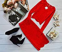 Женский костюм: кофта с длинными рукавами + юбка с набивного гипюра красный
