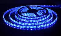 Светодиодная лента  LED 3528 Blue 60 12V без силикона