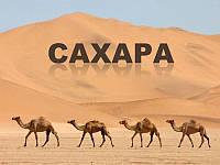 Экскурсия в Сахару из Туниса