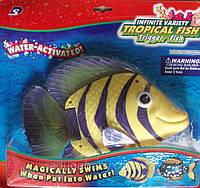 Детская игрушка водоплавающая 3309А батарейки