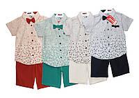 Дитячі костюми на літо для хлопчика Collex 3064, фото 1