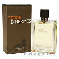 Hermes Terre D'Hermes EDT 100ml (ORIGINAL)