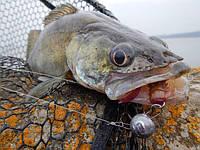 Как выбрать свинцовый груз для успешной рыбалки