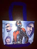 Пляжная летняя сумка Человек Муравей Ant-man