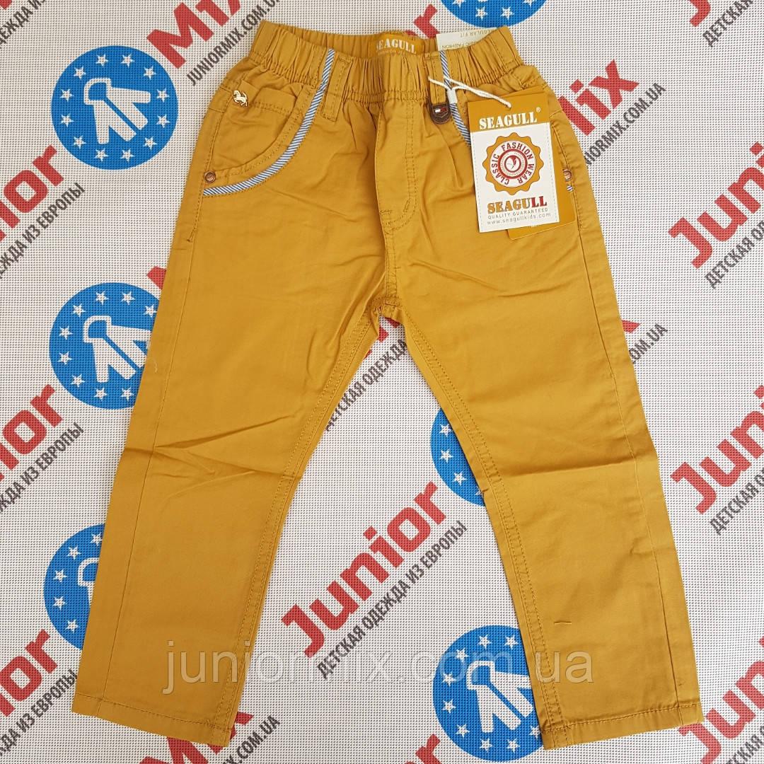 Детские котоновые брюки на резинке на мальчика Seagull