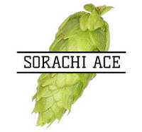 Хмель Sorachi Ace (US) 2017 - 100г