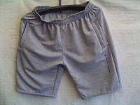 Мужские шорты трикотаж лето опт