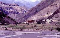 Особенности Тибетской Медицины