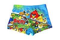 Купальные плавки для мальчиков Angry Birds