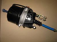 Камера торм.24/24HL (RIDER) RD 019260
