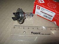 Лампа головного света H7 12V 70W   DK-H7 12V70W