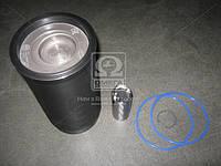 Гильзо-комплект Д 245 d=42 (Г(фосф.)( П(фосф.) с рассек.+кольца+пал.+уплот.) ЭКСПЕРТ (МОТОРДЕТАЛЬ) 245-1000108-Б-90